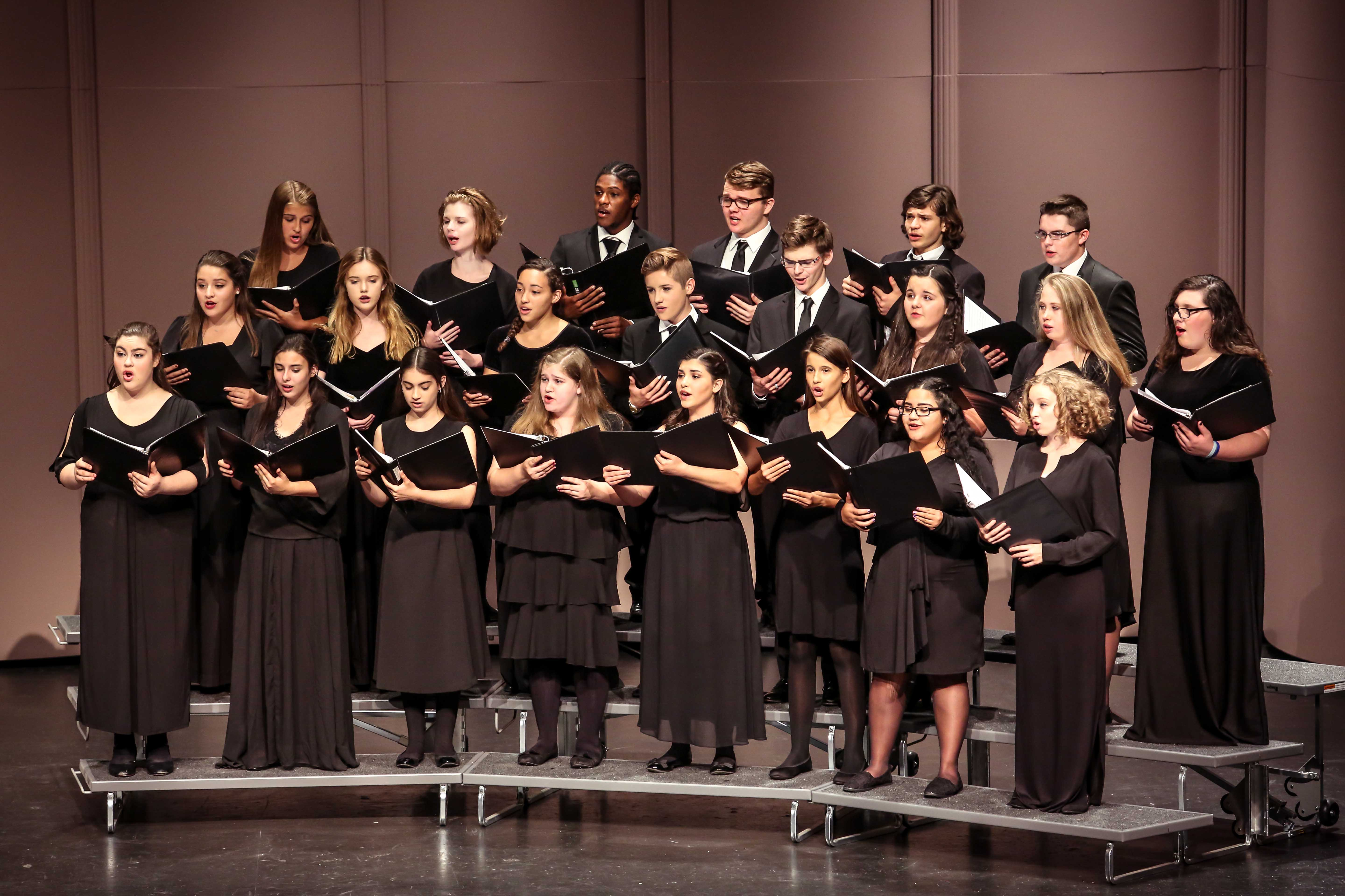 Patel Vocal Arts Chorale 2